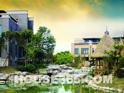 景观竹子手绘立面
